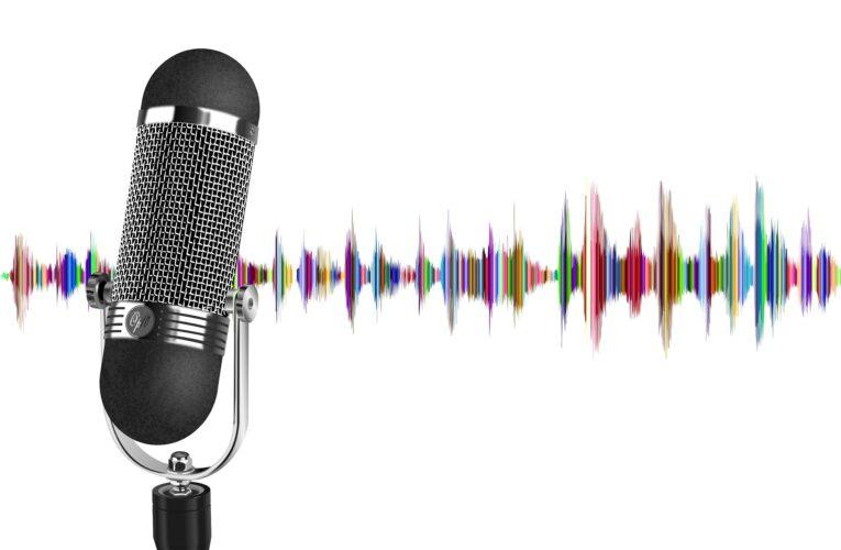 Nie krzycz głośno swojego hasła do Google Assistant czy Alexy, czyli wytyczne EDPB w sprawie Voice Assistants
